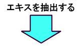 乳酸菌生成エキス ラクティス 矢印